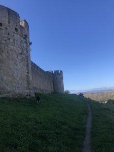 Visite de Carcassonne pour tous